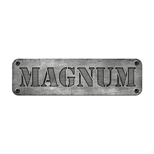 Wieczór Kawalerski Gdańsk - Magnum Arena